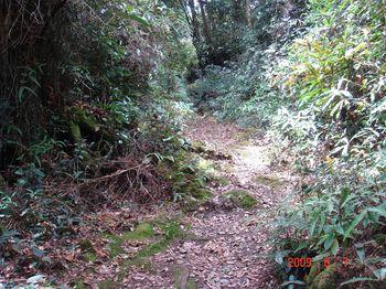 09 trail.jpg