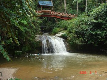 20 trail parit falls.jpg