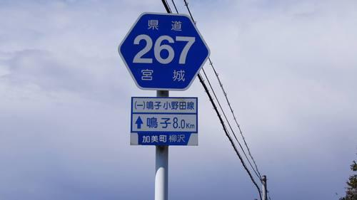 SM_DSC00276.jpg