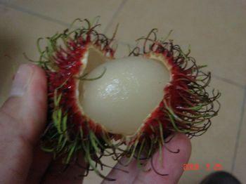 lychee 1.jpg